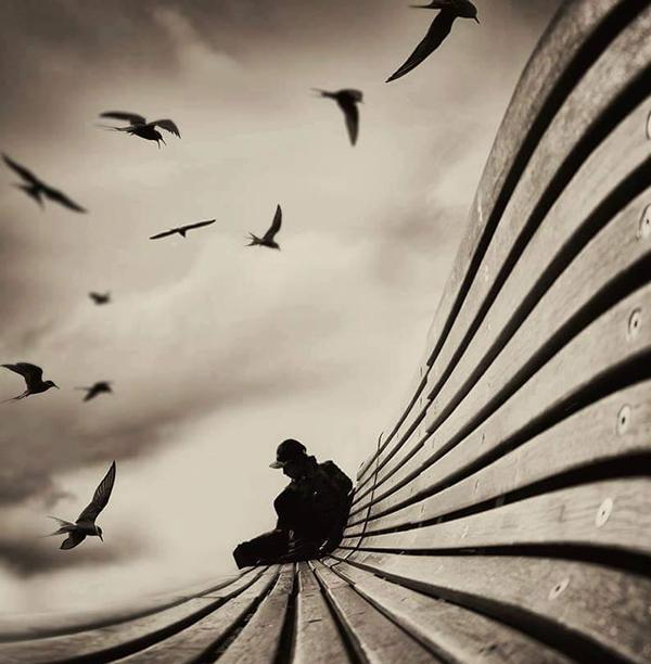 siva slika čoveka na klupi okruženog crnim pticama